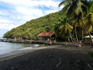 Looking for a different Caribbean Getaway! Check out La Martinique!