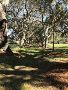 The Cloister - Sea Island, GA